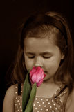 A small girl smelling a flower Stock Images