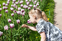 Small girl in summer dress smelling pink tulips Stock Photo