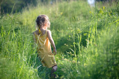 Small girl in tall green grass Stock Images