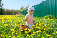 Small girl walking on meadow with basket Royalty Free Stock Images