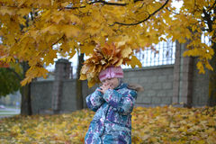 Small girl with wreath of maple leaves in autumn. Small girl with yellow wreath of maple leaves in gold autumn Stock Photo