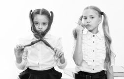 Small girls with tail hairdo. Children need new hairdo in hair salon. small girls back to school.  royalty free stock photo