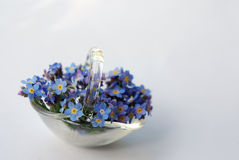 Small glass basket with forget-me-nots Stock Images