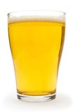 Small Glass of Beer. Beer glass against white background Royalty Free Stock Image