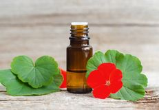 Small glass bottle with essential geranium oil on the old wooden background. Geranium leaves and flowers, close up. Aromatherapy, spa and herbal medicine royalty free stock photo
