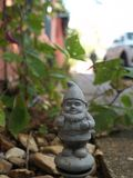 Small Gnome In Front of Ivy royalty free stock image