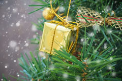 Small gold gift box on christmas tree with snow falling. In soft focus, holiday background Stock Image