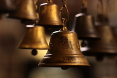 Small golden bells Royalty Free Stock Photography