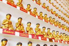 Small golden Buddha statues in the interior of the Ten Thousand Stock Photography