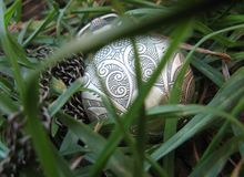 Pocket Watch for Ladies in Grass stock photography