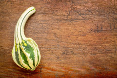 Small gourd over rustic wood Royalty Free Stock Photo