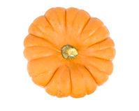 Small gourd pumpkin Royalty Free Stock Photos