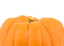 Small gourd pumpkin Stock Images
