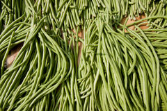 Small green beans Stock Images