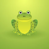 Small green frog Stock Photo