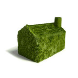 Small green grass house Royalty Free Stock Photo