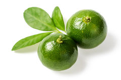 Small green limes Stock Photo