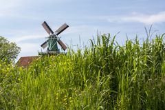 Small green mill in the Netherlands in green field with grass Royalty Free Stock Image