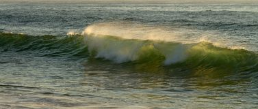 Small green ocean wave backlit by sun light Stock Photography