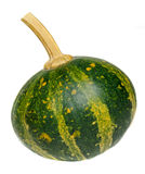 Small green pumpkin, close up, isolated, white background Stock Images