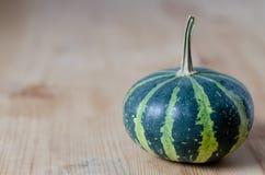 Small green pumpkin Royalty Free Stock Image