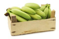 Small green snack bananas in a wooden crate. On a white background stock images