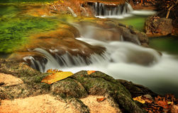 Small green water fall Stock Image