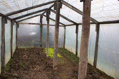 Small greenhouse. Inside of a small domestic greenhouse used for growing vegetables for a single household, in the late winter Stock Photo