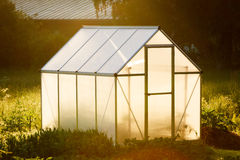 Small greenhouse in backyard Stock Photography