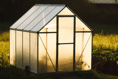 Small greenhouse in backyard Royalty Free Stock Photo