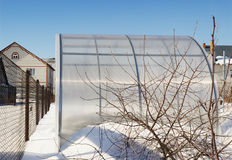A small greenhouse is made of polycarbonate winter Stock Image