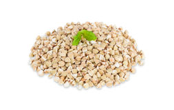 A small group of buckwheat seeds. Royalty Free Stock Image