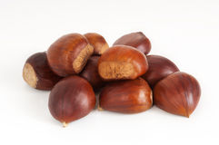 Small group of chestnuts on white Royalty Free Stock Images