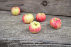 Small group of fresh natural apples Stock Photo