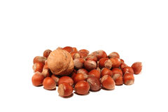 Small group of nuts Stock Photography
