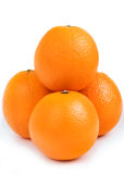 Small group orange Stock Photography