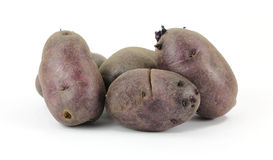 Small Group Purple Potatoes Stock Images