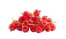Small group of a red currant. Small group of a red currant on a white background Stock Photo