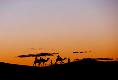 A small group of tourists during a camel trekking at sunset thro Stock Photos