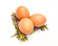 Small group of yellow chicken eggs. Is isolated on a white background Royalty Free Stock Photography