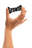 Small growth Royalty Free Stock Image