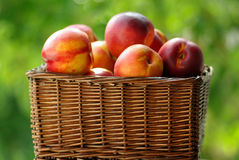 Small hamper of fruit. With red peaches Stock Image