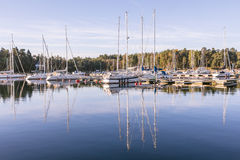 A small harbour at the coast of Sweden Royalty Free Stock Images