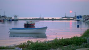 Marine evening scene of quiet harbour with tied up boats and sea-gulls stock footage