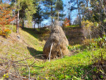Isolated small haystack  Stock Image