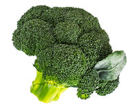 Small head of broccoli on a white background Royalty Free Stock Photos