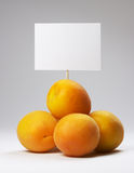 Small heap of apricots with signboard Stock Image