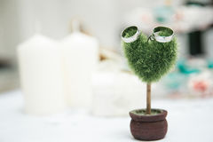 Small heart shaped plant with wedding rings Royalty Free Stock Images
