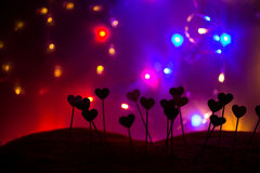 Small hearts in a row, lights in the background Stock Photo