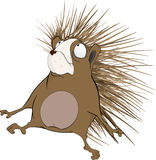 Small hedgehog. Cartoon. Cheerful and ridiculous brown wood hedgehog Royalty Free Stock Photos